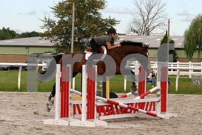 horse2471