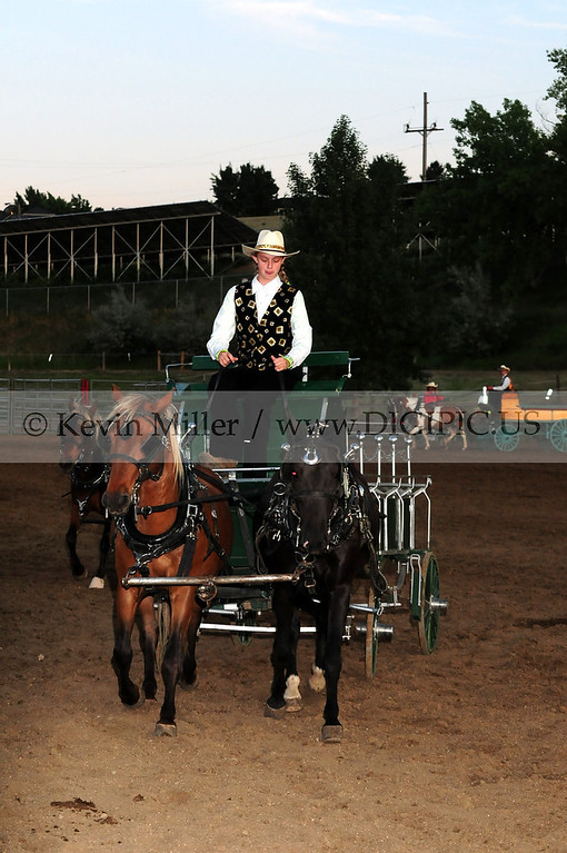 2012 White Division Show Harness2