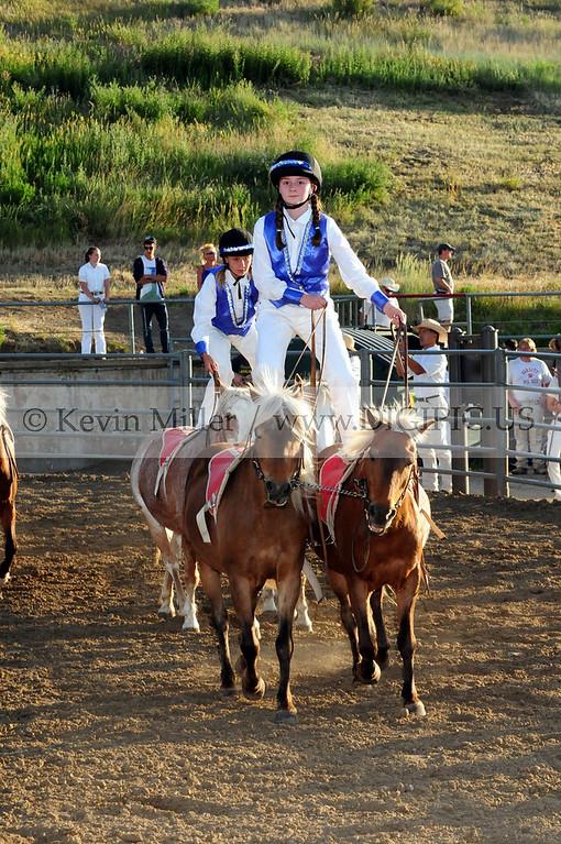 2012 White Division Show Pony Roman