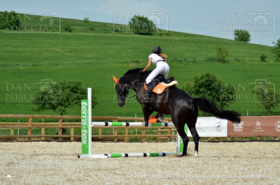 Visit the Equestrian Salina Turda