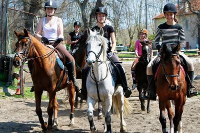 horse 2010