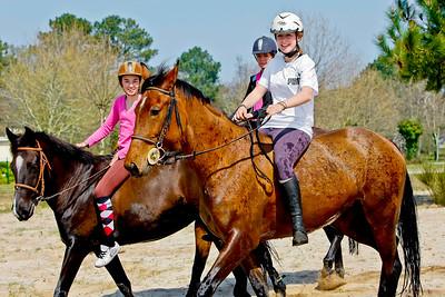 horse 2122