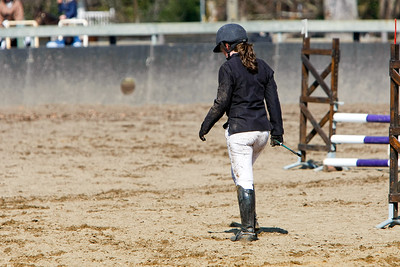jumping horse 5056