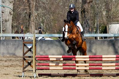 jumping horse 5042