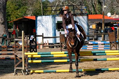 jumping horse 5246