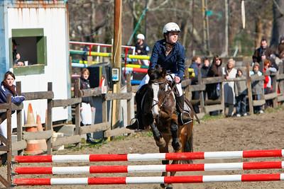 jumping horse 4432
