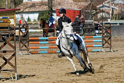 jumping horse 5323