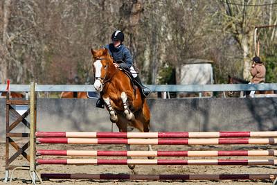 jumping horse 5226