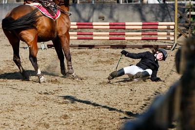 jumping horse 5051