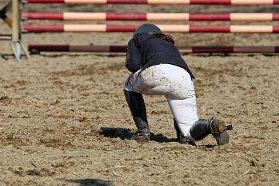 jumping horse 5053
