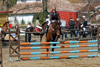 jumping horse 5236