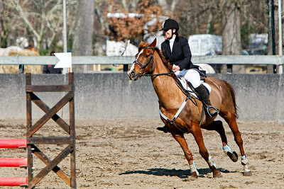 jumping horse 5270