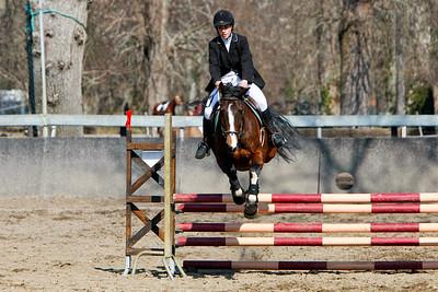 jumping horse 5178