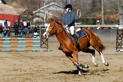 jumping horse 5213