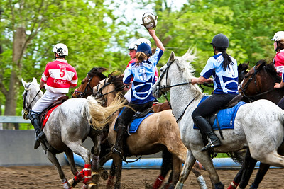 horseball 6624