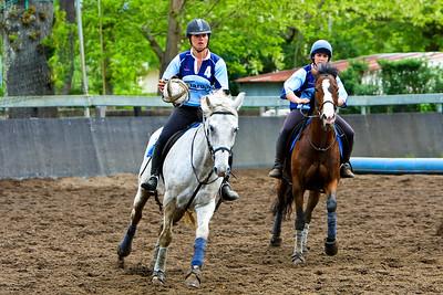 horseball 6472