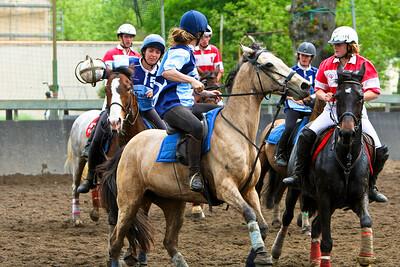 horseball 6525