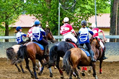 horseball 6645