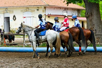 horseball 6708