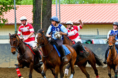 horseball 6433-1