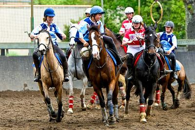 horseball 6523