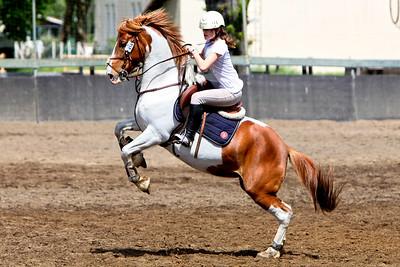 horseball 1902