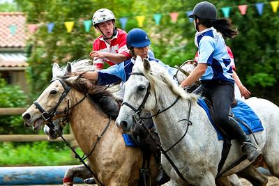 horseball 6573