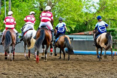 horseball 6634