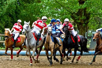 horseball 6570