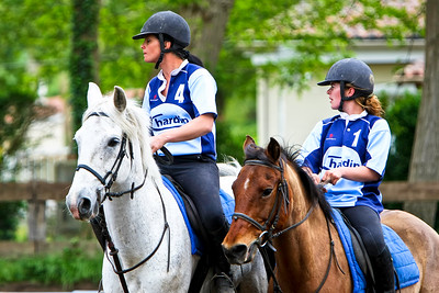 horseball 6383