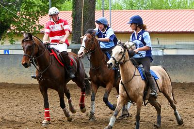 horseball 6513