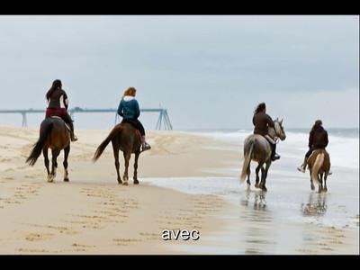 Horses Beach-Part1