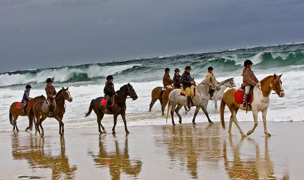 horse beach 592