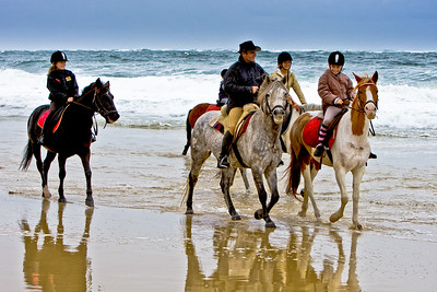 horse-rinding 5947
