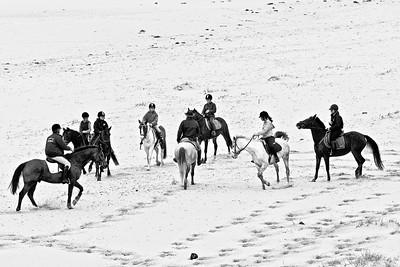 horse-riding 5801-4