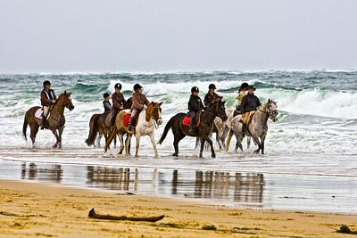 horse-rinding 5889