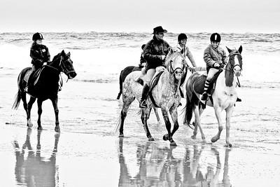 horse-rinding 5947-4