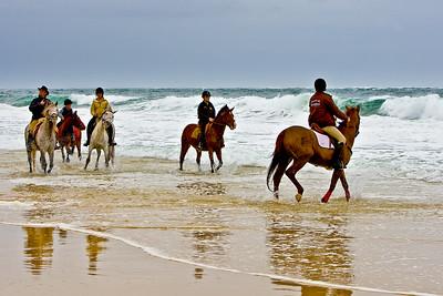 horse-rinding 5939