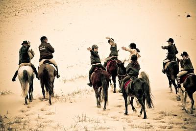 horse beach 5768-A