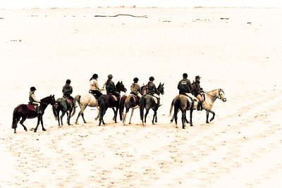 horse beach 5720-B