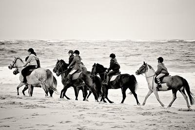 horse-rinding 5871-3