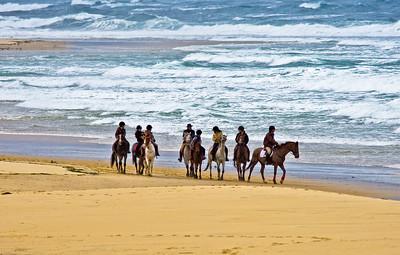 horse-riding 5817-1