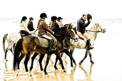 horse-rinding 5961-A