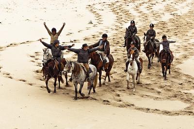 horse beach 5737-A