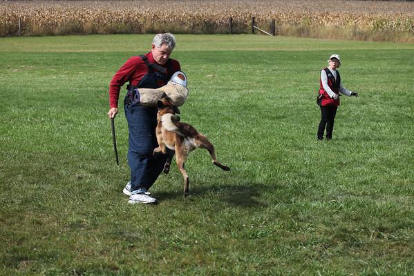 Schutzhund demo 9/30/2012