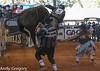 20130217_Extreme Bulls Brighton-16