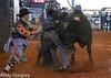 20130217_Extreme Bulls Brighton-8