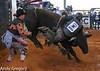 20130217_Extreme Bulls Brighton-5
