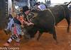 20130217_Extreme Bulls Brighton-12