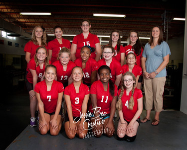 ms-volleyball-team